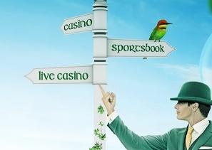 Sprawdź najbardziej przydatne kasyno porady